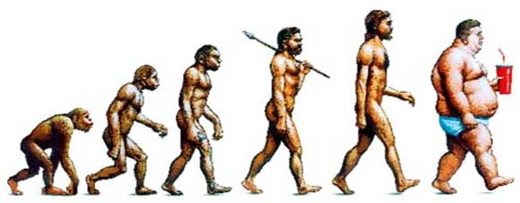 the-evolution-of-obesity.jpg